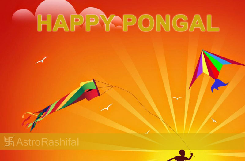 Pongal greetings 2017 pongal festival for 2017 tamil festival of greetings for pongal 2017 m4hsunfo